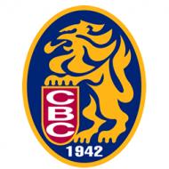 Cápsula informátiva, Logo de Los Leones del Caracas
