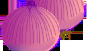 Receta a base de cebolla