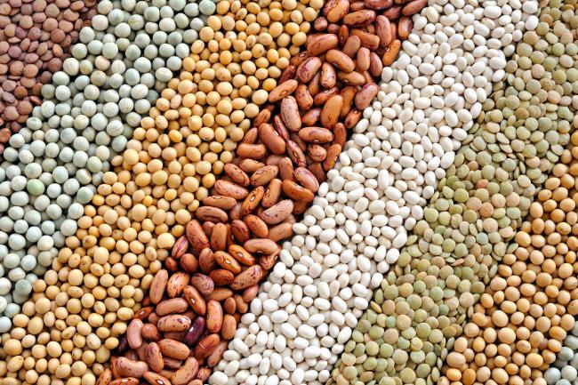 Los mitos de las legumbres