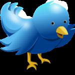 Twitter registró un aumento en su número de usuarios activos al mes